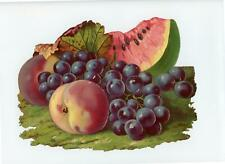 1800's ANTIQUE VICTORIAN DIE CUT SCRAP*LARGE*WATERMELON GRAPES PEACHES*EMBOSSED