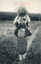 Japan Mt HIKI Girl gathering twigs early PPC
