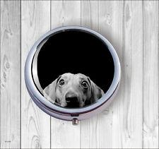 DOG DACHSHUND CURIOUS PILL BOX ROUND METAL - dnj7Z