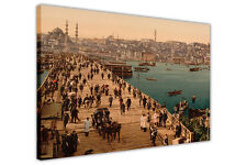 VINTAGE 1800S ISTANBUL OTTOMAN TURKEY CANVAS WALL ART PICTURES FRAMED CITY PRINT
