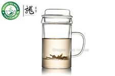 Clear Glass Mug With Lid & Filter 400ml B-231S3