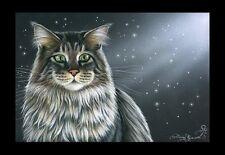 Maine Coon Cat Starry Eyes Print by I Garmashova