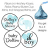 108 Baby Shower Boy Personalized Hershey Kiss Stickers Party Favors Labels