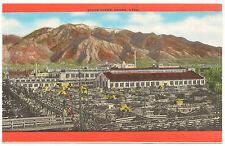 Stock Yards, Ogden, Utah, Unused, Unmailed Vintage Postcard