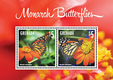 Grenada-2014-Butterflies-Monarch Butterflies