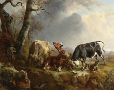 Brascassat Jacques Two Bulls Defending A Cow Attacked By Wolves Canvas #5633