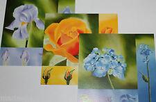 Carte postale Lot de 3 illustration illustrateur fleur iris rose hortensia Neuf