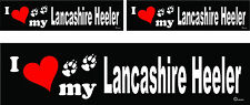 3 I love my Lancashire Heeler dog bumper vinyl stickers decals 1 large 2 small