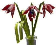 Gorgeous glass Fuchsia flower display