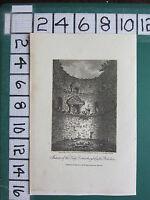 1807 Datierter Antik Yorkshire Aufdruck ~ Interior Der Keep Bei Coninsburgh Burg