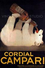 Campari White bear Vintage Italian Liquor Advertising Repro Canvas Print 20x30