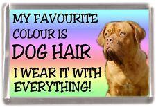 """Dogue de Bordeaux Dog Fridge Magnet """"My Favourite Colour is Dog Hair"""""""