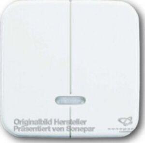 Busch-Jaeger 6545-84 Busch Tastfläche für Memory-Seriendimmer,Doppeldimmer 6565U