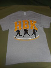 2016-17 Stanley Cup PITTSBURGH PENGUINS Small Med or X-Large HBK Gray T Shirt