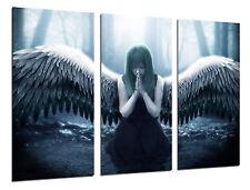 Canvas Modern Photo Angel Mitologico,97x62cm ref. 26361