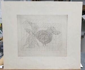"Paul Flora (Austrian, 1922-2009) Vintage S/N Etching 113/120 19""×22 Bird in Cage"