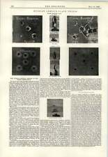 1893 Russian Armour Plate Trials Ochta Competition