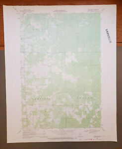 "Thor SW, Minnesota Original Vintage 1969 USGS Topo Map 27"" x 22"""