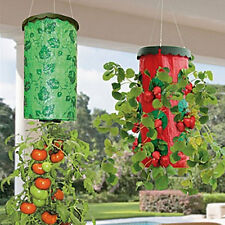 Strawberry Upside Down Hanging Planter Plant Hang Row Seeds Greening Planting