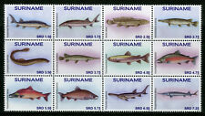 Suriname 2016 MNH Fish 12v Block Set Fishes Marine Vissen Stamps