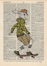 Hare on a Skateboard Dictionary Art Print Wall Picture Vintage Animal in Clothes