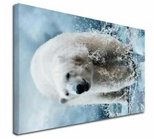 More details for polar bear on ice water x-large 30
