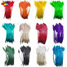 50 Pcs arrow turkey feathers 25-30 CM/10-12 INCH for jewelry Carnival Decorative