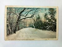 Vintage Postcard Lake Harriet Boulevard in Winter Minneapolis Minn