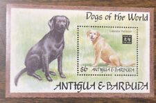 Antigua 1994 Year Of The Dog MNH S/S