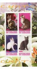 Gatti - Foglio di 4 -