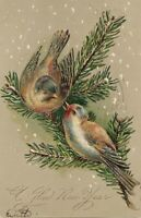 1906 Die-Cut Postcard Gold Accents BIRDS on BRANCH Attleboro Mass Postmark