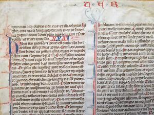 Large Manuscript Leaf Vellum Biblia Latina Deuteronomium - 13th century