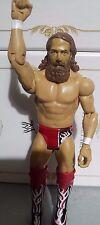 WWE Daniel Bryan Mattel 2013 Figur WWF Wrestling