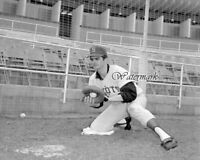 MLB 1969 Seattle Pilots Catcher Larry Haney Black & White 8 X 10 Photo Picture