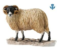 NEW Border Fine Arts Contemporary Classics Ram Made In Scotland