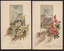 2-Birthday Greetings-PFB-Flowers-Scenic-Embossed Antique Postcard Lot
