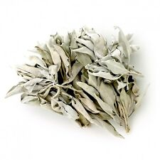 Organic California White Sage - Clusters and Loose Leaves in Bulk - 1 Pound Bag