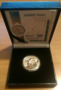South Africa 2003 Rhino 10 Cents 1/2 Ounce Proof Silver Coin Rare with COA