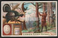 Bird Hunting Cock Of The Woods c1902 Trade Ad Card