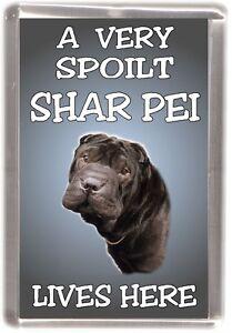 "Shar Pei Dog Fridge Magnet  ""A VERY SPOILT SHAR PEI LIVES HERE"" by Starprint"
