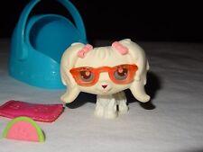 Littlest Pet Shop LPS 65 White Maltese Dog Puppy Bow Aqua Teal Blue Carrier Case