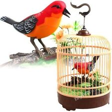 Singing Chirping Bird Cage Realistic Sound Movement Music Box Mechanic Toy Kids