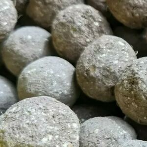 50 Bee Bombs (100% eco friendly)1st Class Rec Mail ORGANIC Wildflower Seed Bombs