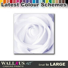 Rose Love Flowers FLORAL  Canvas Print Framed Photo Picture Wall Artwork WA
