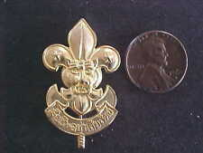 Asia Tiger Head Thailand Scouts Badge 40mm