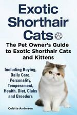 Exotic Shorthair Cats the Pet Owner S Guide to Exotic Shorthair Cats and.