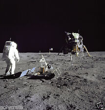 Poster Photo Nasa - Apollo 11  La Lune - Buzz Aldrin module lunaire Eagle - 1969