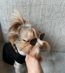 Small Dog Cat Sunglasses Puppy Photo Costume Pros Accessories Pet Supplies 1pc