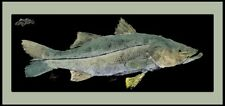 "Realfish Gyoyaku Series "" Snook "" floor mat fish mat with border 18""x40"""