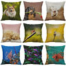 Cotton Linen printing Animal dog dragonfly Fish Pillows case Home Decor Cover